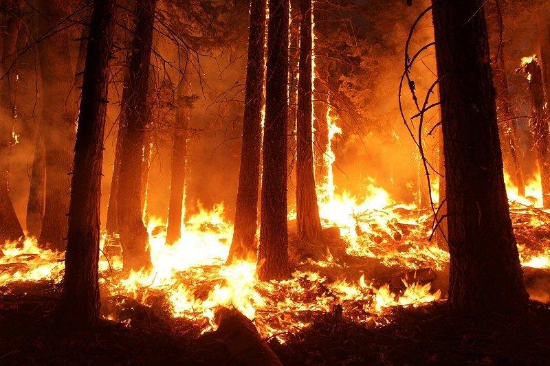 Turkey battles wildfires for 6 days in coastal resorts