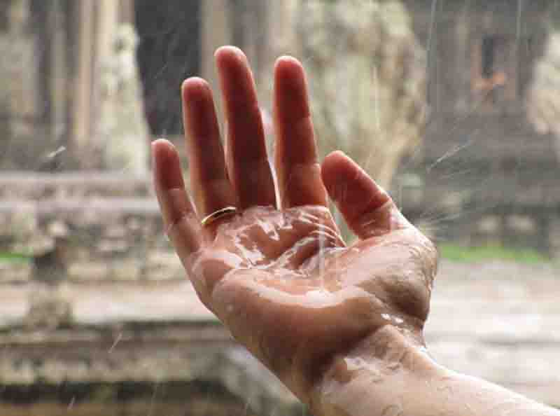 India to have normal monsoon in 2021: Skymet