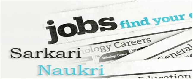 Image result for Govt Jobs