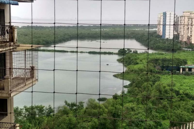 View of Navi Mumbai's Talawe wetland, the proposed site for a golf course and residential towers. In 2018, the Bombay High Court quashed the notification based on the petition filed by the Agarwals. Photo from Sunil Agarwal.