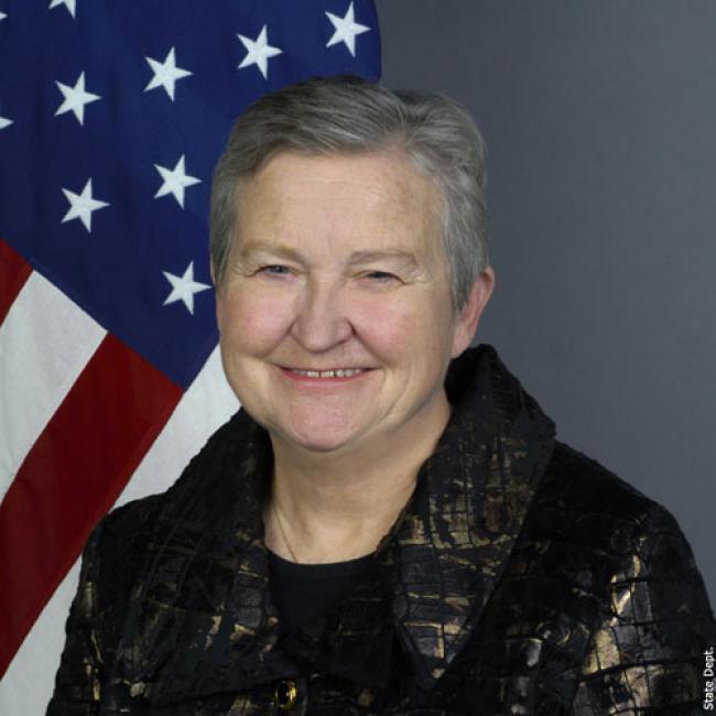 US envoy Nancy J. Powell resigns