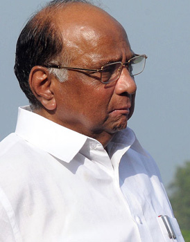 Maha polls: NCP won't form alliance with BJP, says Pawar