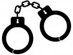 Tamil Nadu : Student arrested for shouting anti-BJP slogan on board plane gets bail