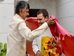 Rahul Gandhi meets Chandrababu Naidu, vows to work with TDP to defeat BJP