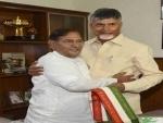 Lok Sabha Polls: Chandrababu Naidu meets Sharad Pawar and Sharad Yadav