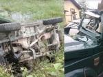 Assam: Four forest department staff die in mishap