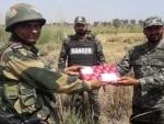 BSF, Pak Rangers exchange sweets on Eid along IB