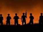 Kashmir: Security forces gun down terrorist during encounter