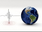 Eight injured in earthquake in Istanbul - Turkish Prez