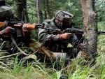 Pakistan violates truce on IB in Samba
