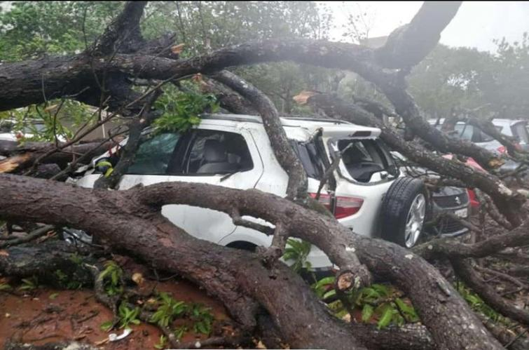 Cyclone Fani claims three lives in Odisha, likely to hit WB tonight