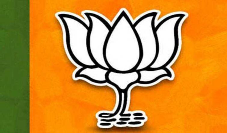 Bharatiya Janata Party names bypoll candidates for Goa, Karnataka