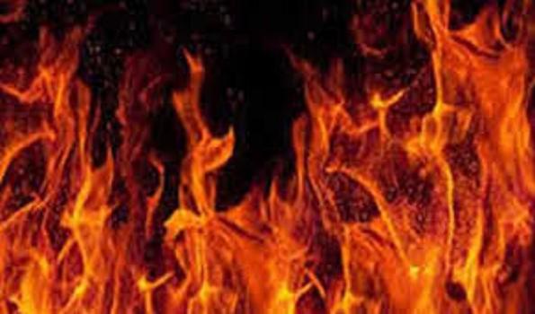 Delhi building fire leaves three dead
