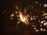 Nagaland bans sale and use of fire crackers