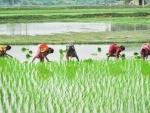 Thousands of farmers protest against farm ordinances in Punjab