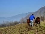 Jammu and Kashmir: Kathua farmers hail agriculture sector reform bills
