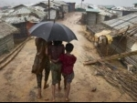 Rohingyas should get citizenship, says Samajwadi Party leader Ram Gopal Yadav in Upper House