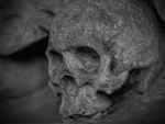 Odisha: Skeleton recovered in Rayagada district
