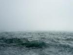 Cyclone to hit Odisha coast: Govt alerts 12 districts, deploys NDRF, ODRAF teams