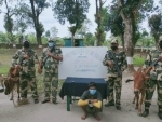 BSF Guwahati Frontier apprehend one Bangladeshi smuggler and rescue 34 cattle heads