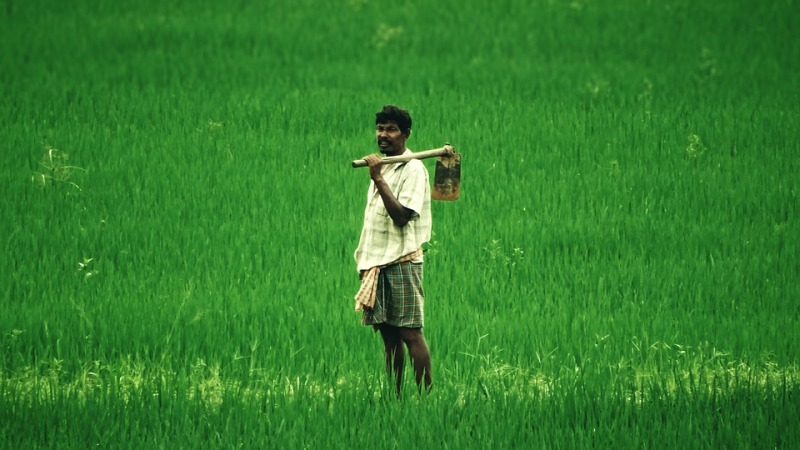 Urge govt to include Farmers' Union recommendations in Pesticides Management Bill: Experts