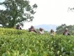 Meghalaya: HNLC: Seeking Attention