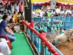 Rahul Gandhi attends Jallikattu in poll-bound Tamil Nadu making U-turn on Congress stand