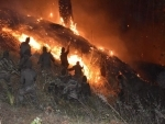 Indian army douses raging forest fire in Arunachal Pradesh