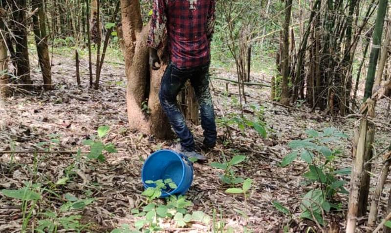 Assam: Missing person's body found hanging inside jungle