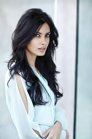 Abhay Deol, Diana Penty to Star in 'Happy Bhaag Jayegi'