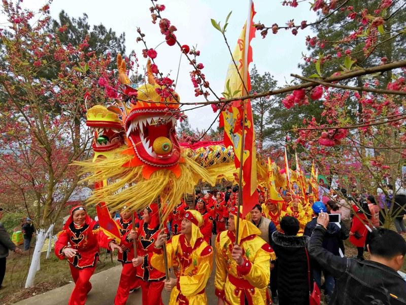 Dragon dance in China's peach blossom festival
