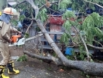 Cyclone Amphan: Fire Service personnel remove trees uprooted due to heavy winds in Odisha