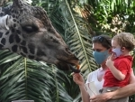 Singapore Zoo reopens after lockdown