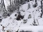 Kashmir: Heavy snowfall in Kud area of Udhampur