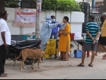 Prayagraj: Health worker collects swab