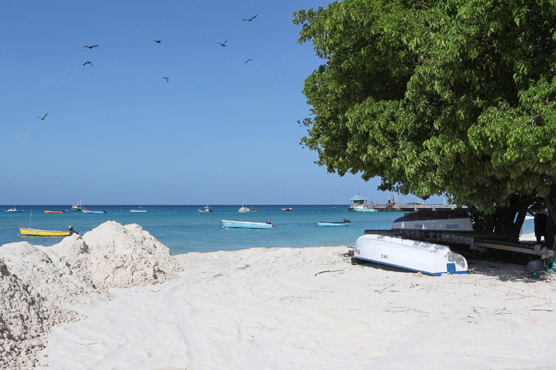 COVID-19: Barbados tourism hit by pandemic