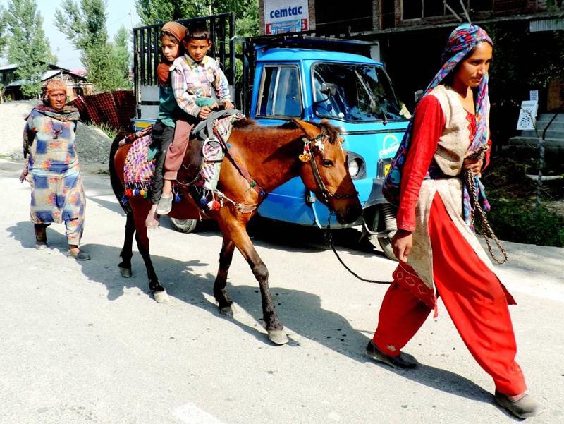 Nomadic people moving to lower regions ahead of winter in Kashmir