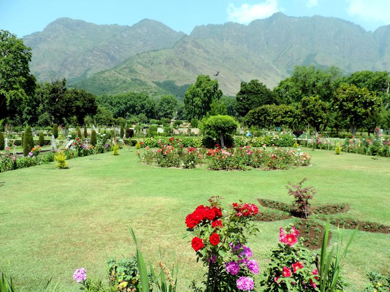 Kashmir in Images: (July 8, 2020)