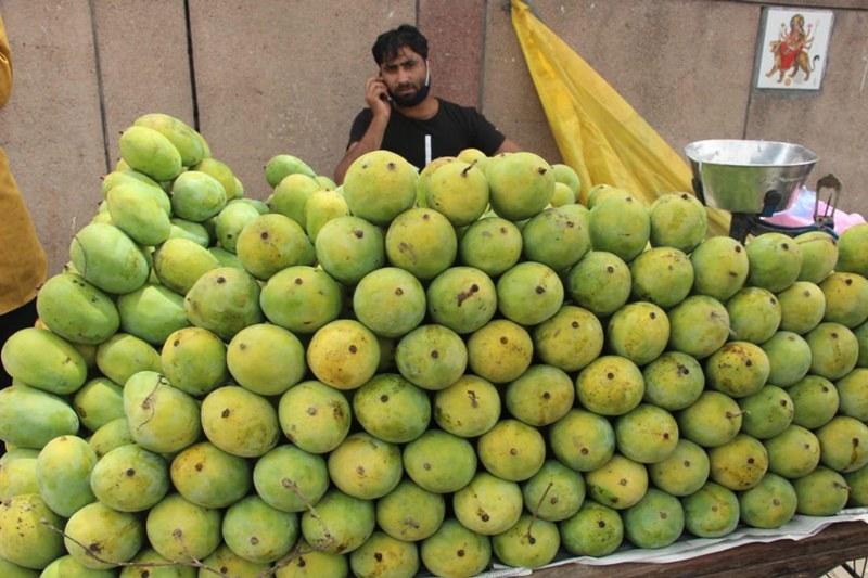 Fruit vendor selling mangoes in New Delhi