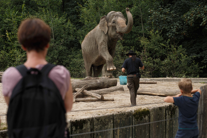 Slovenia: Visitors view Elephant Ganga playing with her keeper at the Ljubljana Zoo