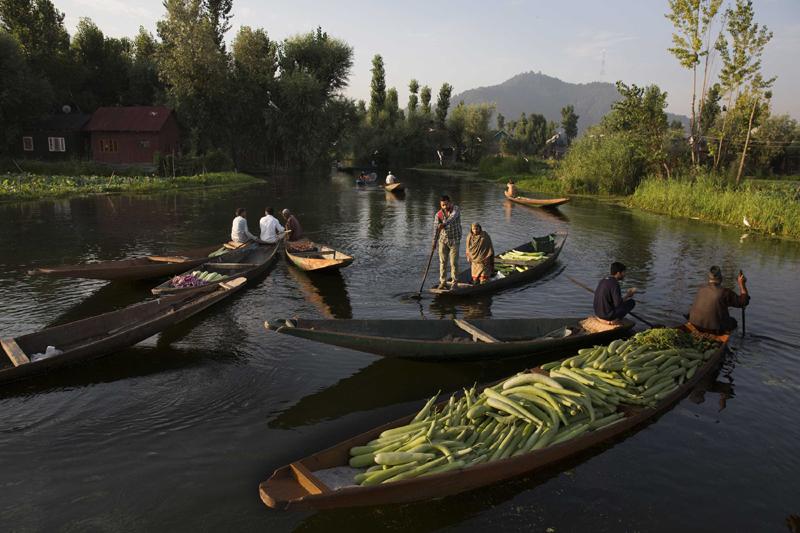 Kashmir: Vendors carry vegetables on boats at a floating vegetable market in Dal Lake