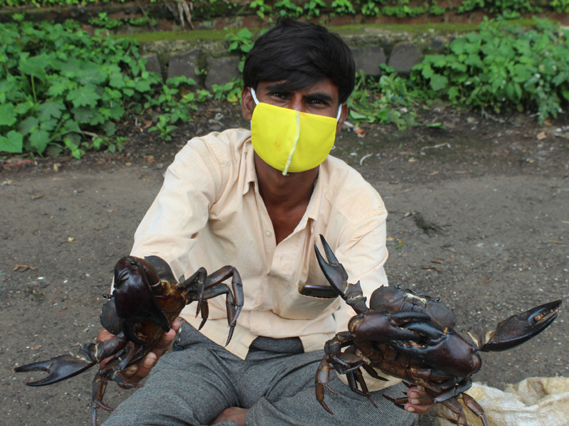 Belagavi: Villagers waiting to sell Black Crabs
