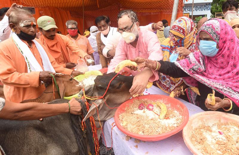 Bukkal Nawab BJP MLC tie rakhi to cows
