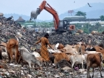 Ragpickers collect reusable items from the garbage dump in Guwahati