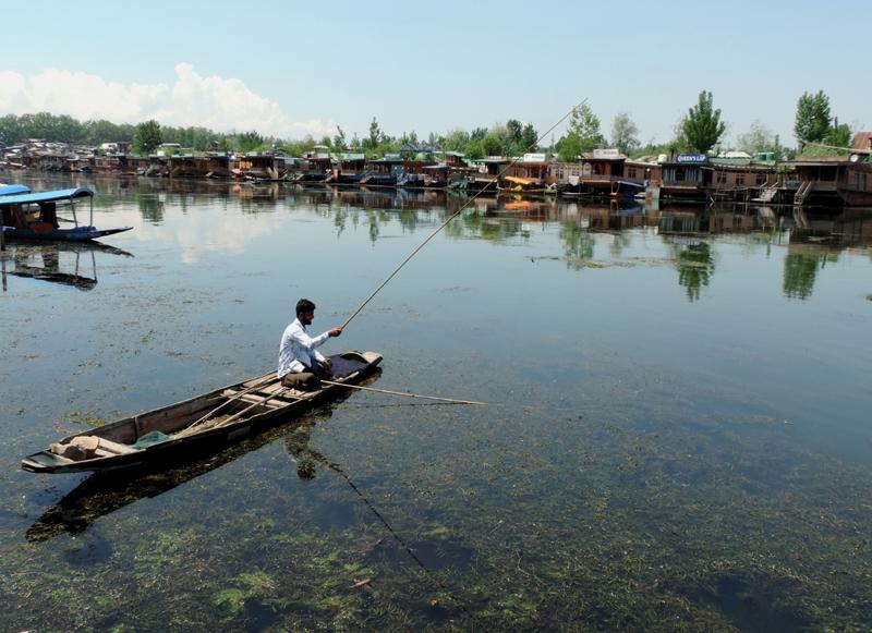 Jammu and Kashmir: Boat man fishing in Dal Lake