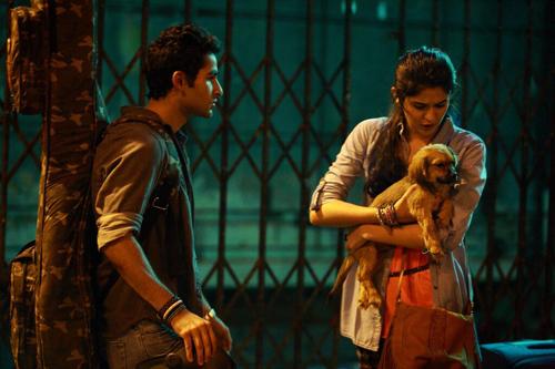 Adopt a Dog Be a Hero, Lekar Hum style