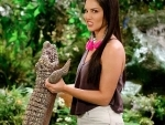 Sunny Leone shares funny image on social media with alligator