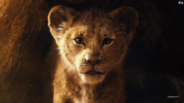 Disney's The Lion King hits cinema halls today