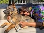 Priyanka Chopra Jonas cuddles dogs in sunshine