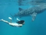 World Oceans Day: Katrina Kaif once went for swim with an underwater friend, shares video